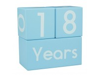baby milestone blocks baby age blocks for baby pictures shop online in pakistan